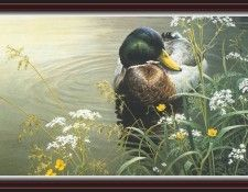 We SnF 012 BatemanR MeadowsEdge  Mallard. Bateman, Роберт