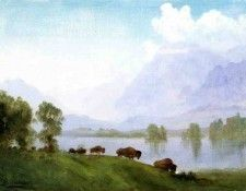 Bierstadt Albert Buffalo Country. Бирштадт, Альберт
