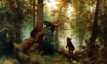 Картина «Утро в сосновом бору» описание